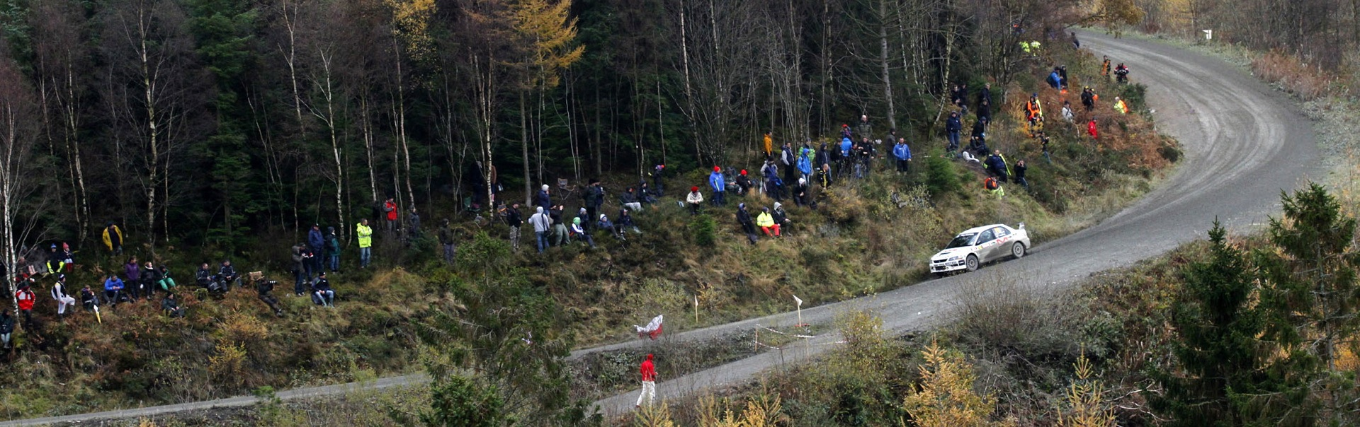 Rally GB Forest - News Header